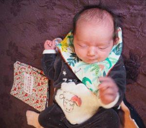 petit Bavoir naissance